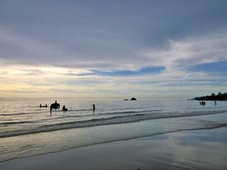 Elephants bathing in the ocean during sunset. Koh Chang island , Thailand