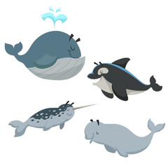 Cartoon sean animals set. Whale with fountain, killer whale orca, white beluga whale and narwhal. Sea and nord ocean animals. Kid education vector illustration collection.