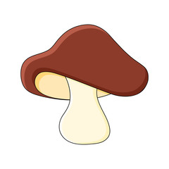 boletus mushroom cartoon design isolated on white background