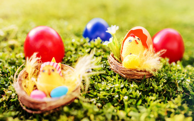 Easter. Colorful Easter eggs in a grass
