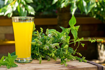 Glass of Juice with Peppermint in the Garden.