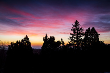 Colorado's sky erupts in pink, as the sun begins to rise over the Rocky Mountains. The trees in silhouette are in Morrison, Colorado by Red Rocks Amphitheater near Denver.