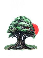Deciduous tree. Style of bonsai.