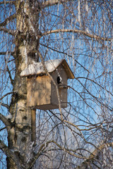 A birdhouse on a tree. Winter. Hoarfrost on the branches of a tree.