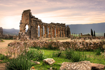 Volubilis, Roman city of antiquity in Morocco