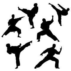 Black silhouette of karate on a white background