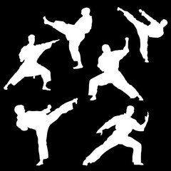 White silhouette of karate on a black background