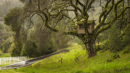 Wooden tree house in the countryside.