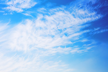 Sky background with clouds . Sky with clouds