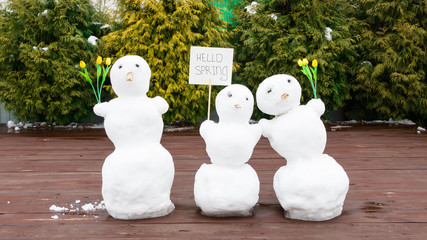 """Three snowmen. The concept of """"hello spring."""" Spring came. In the hands of a snowman there are tulips and a sign with an inscription. Snow is melting. March. Broken snowman."""