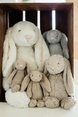 lop eared plush bunnies