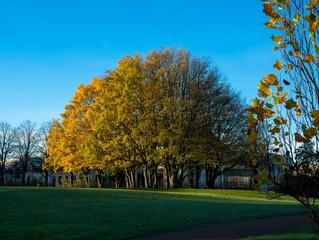 Malmö Park