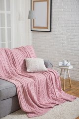 sofa with pink plaid in the interior near the window