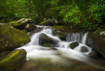 Great Smoky Mountains TN Roaring Fork Nature Waterfall Scenic Landscape Gatlinburg Tennessee