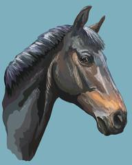 Colorful Horse portrait-10