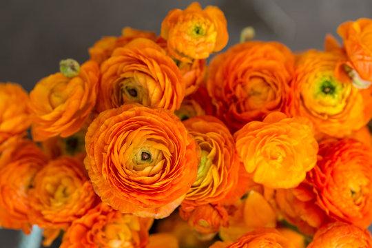 Bouquet of orange ranunculus