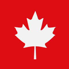 Maple leaf on a red background