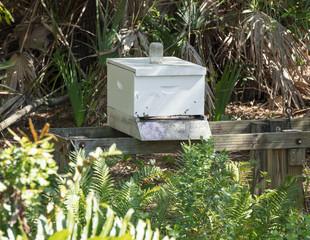 honey keeper bee box houses honey bees