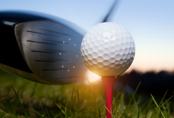 Wall Mural - Golf club and ball in grass with sunlight
