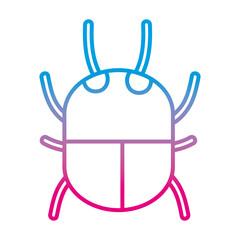 degraded line spider insect animal danger symbol