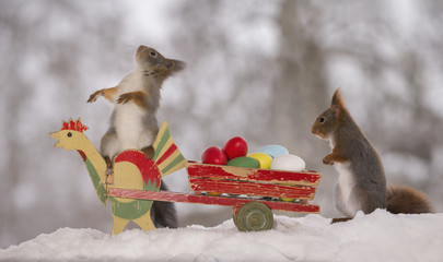 red squirrels on a chicken and wagon with eggs