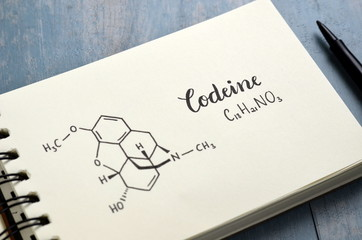 CODEINE Chemical Formula and Structure in Notebook