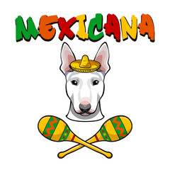 Image of an dog bull terrier wearing in sombrero with maracas.  illustration.