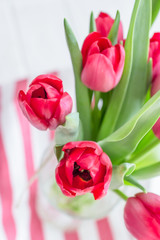 Beautiful spring flowers red tulips on a striped background. Free space