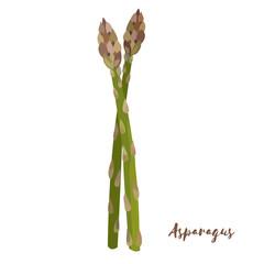 Asparagus. Flat design. Vector illustration.