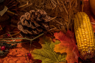 Pinecone and Leafs, Thanksgiving Table Setting, Macro Photography, Leafs and Corn