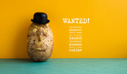 Wanted top priority potato gangster poster. Old fashioned style bowler black hat potato yellow wall, green floor. Text message public enemy prisoner bandit racketeer gunman dangerous criminal outlaw.