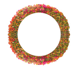 frame, isolated, white, decoration, circle, abstract, round, christmas, border, oval, symbol, colorful, red, ornate, metal, flower, empty, decorative, color, object, picture, pattern, ornament, shape,