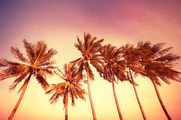 Sunset at tropics
