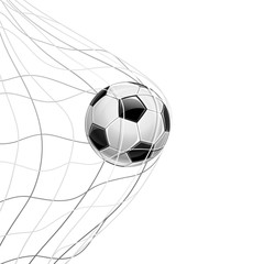 Soccer Ball in Net