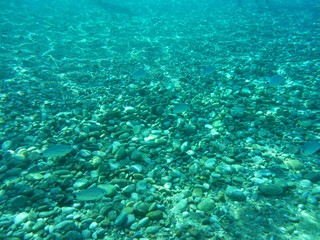 Mar azul de Cerdeña. Fondos.