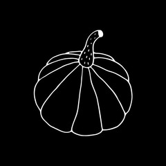 Linear cartoon hand drawn pumpkin drawing. Cute vector black and white pumpkin drawing. Isolated monochrome doodle pumpkin drawing on black background.