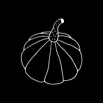 Linear cartoon hand drawn pumpkin drawing. Cute vector black and white pumpkin drawing. Isolated monochrome doodle pumpkin drawing on black background.
