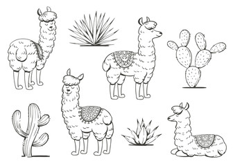 Set of cute lamas and cacti. Vector illustration.