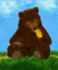 big brown bear sitting on the grass and eating honeycomb honeycombs