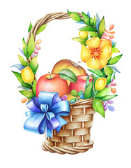 Watercolor illustration of the basketwith ribbon, yellow flowers and apples
