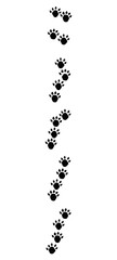 Otter footprints with typical oblique lined tracks - isolated black icon vector illustration on white background.
