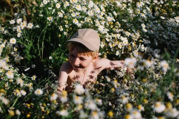 Happy boy in camomile field