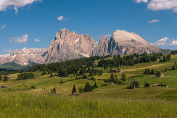 Alpe di Suisi in the Dolomites of Italy