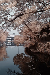 One corner of Suzhou,Infrared photography