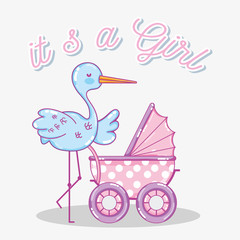 Its a girl baby shower card