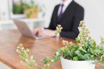 パソコンを見る男性 手元 ビジネス