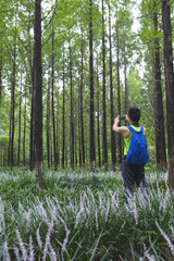Young man taking picture of the trees in the woods