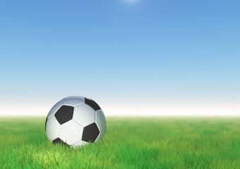 3D football nestled in grass