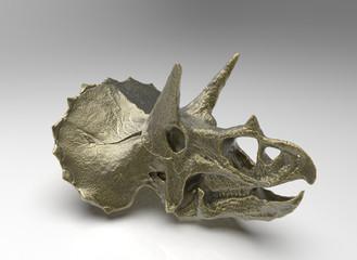teschio triceratopo oro antico illustrazione