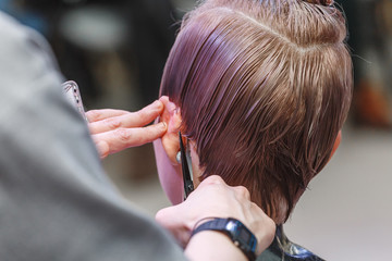 Close up hairdresser's hands cutting client's hair by scissors of young woman in beauty salon